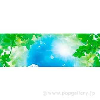 ラウンドシート 新緑(写真)
