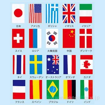 テトロン20カ国連続旗 (全長11.5mタイプ)