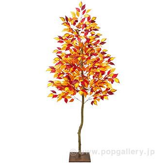 ナチュラルブナ立木 (高さ:180cm)