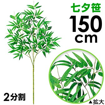 150cm七夕笹