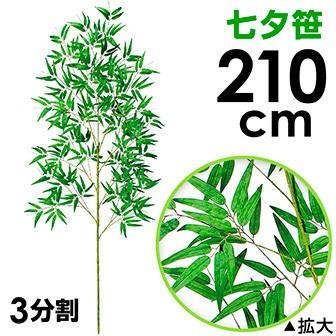 210cm七夕笹