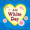 テーマポスター 3.14 WhiteDay