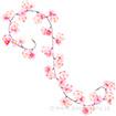大桜ガーランド(クリップタイプ)