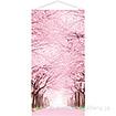 桜並木タペストリー