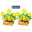 菜の花ウッドポット(2ヶ1セット)