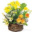 菜の花盛カゴ