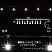 LEDストリングバルブライト(ホワイト)