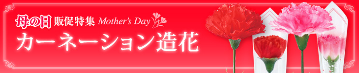母の日カーネーション(造花)
