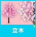 桜の立木を見る