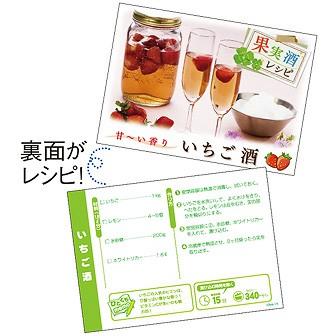 レシピ4種セット「果実酒」(4種×各100枚)