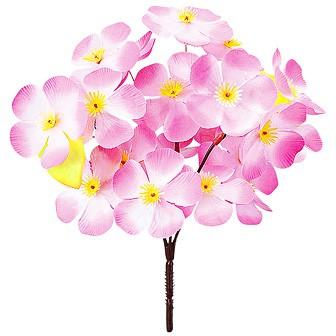 大桜ブッシュ