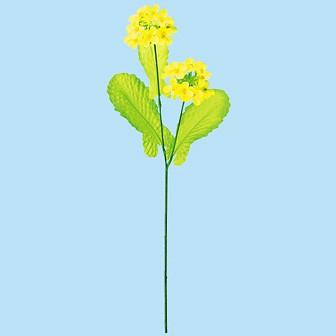 ニュー菜の花スプレー
