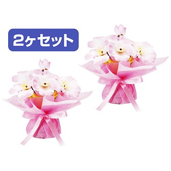 桜プチラッピングポット(2ヶ入)