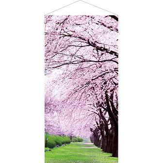 桜満開タペストリー(防炎加工)