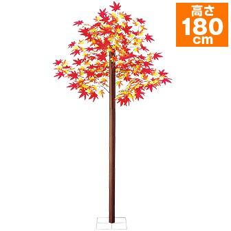 もみじ立木 (高さ:180cm)