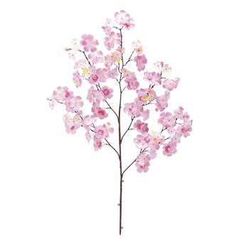 ミックス桜大枝