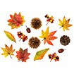秋の味覚セット