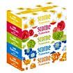 【scottie】スコッティフラワーボックス160W(5P)