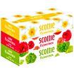 【scottie】スコッティフラワーボックス160W(3P)